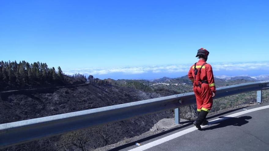 Consecuencias del fuego en la cumbre de Gran Canaria.