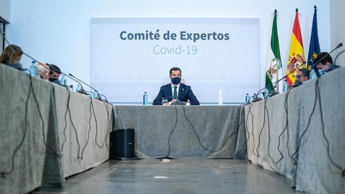Moreno, presidiendo esta tarde la reunión del Consejo Asesor de Alertas de Salud Pública de Alto Impacto