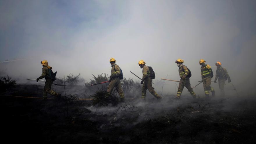 Ministerio abre consultas para un posible estatuto de los bomberos forestales