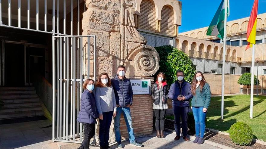 El grupo de investigacion del estudio en el Ifapa de Córdoba.