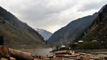 La destrucción masiva de bosques lastra los esfuerzos globales para contener la crisis climática