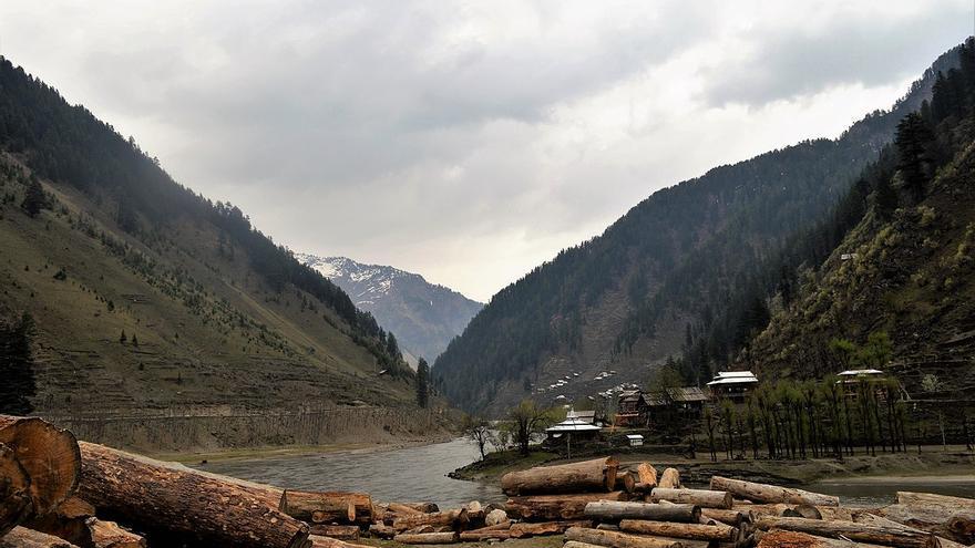 Tala forestal en Cachemira.