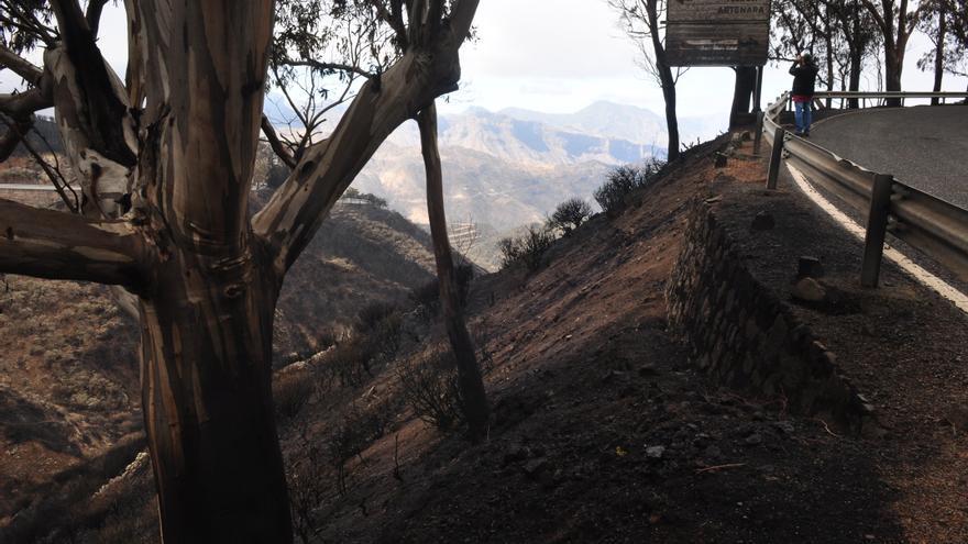 Efectos del incendio en la Cruz de Tejeda. (ÁNGEL SARMIENTO)