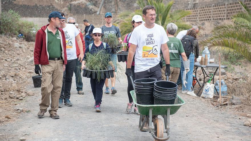 Jornada de reforestación por el Día del Árbol en Gran Canaria