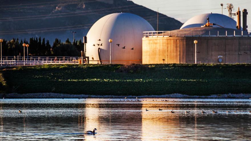 El Ministerio incluye las lagunas de Cabezo Beaza en un inventario nacional de humedales