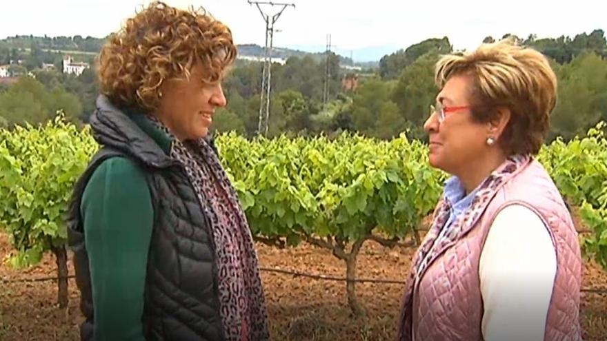 Montserrat pasa su jornada de reflexión dando un paseo rural en familia en Sant Sadurní d'Anoia (Barcelona)