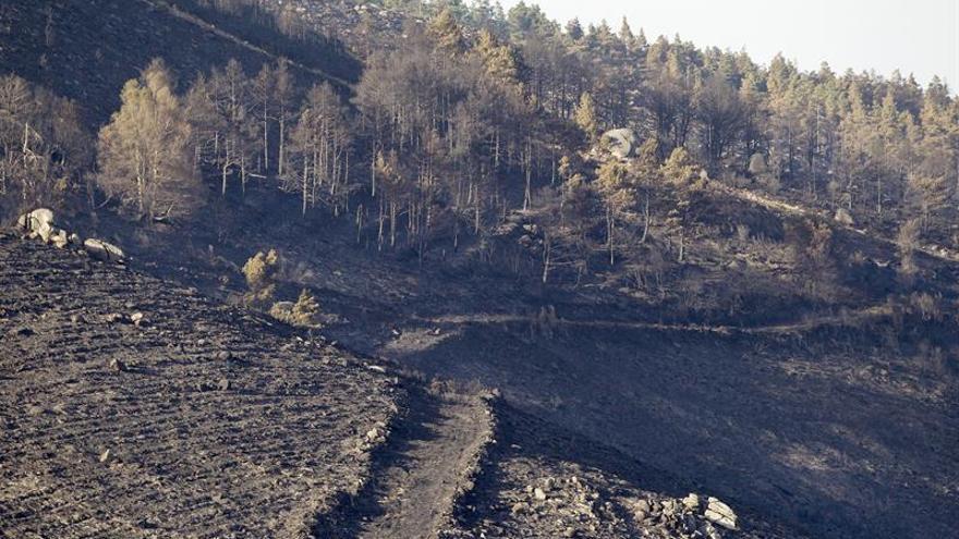 El incendio de Chantada (Lugo) ya ha calcinado 106 hectáreas y sigue activo