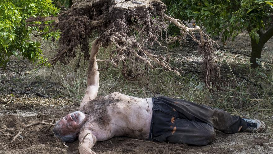 """Josep Agost, artista castellonense, posa junto al árbol que utilizará en la 'performance' """"Réquiem del taronjer""""."""