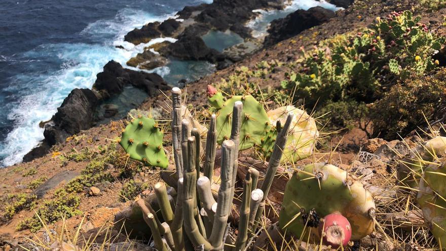 Panorámica de la costa de Juan Adalid (Garafía)