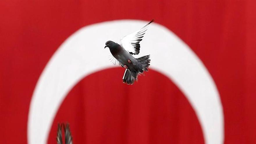Turquía cierra 370 ONG por supuestos vínculos con el terrorismo
