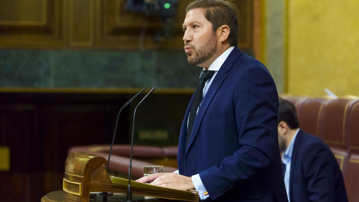 El exdiputado de Vox Carlos Hugo Fernández-Roca Suárez, en la tribuna del Congreso.
