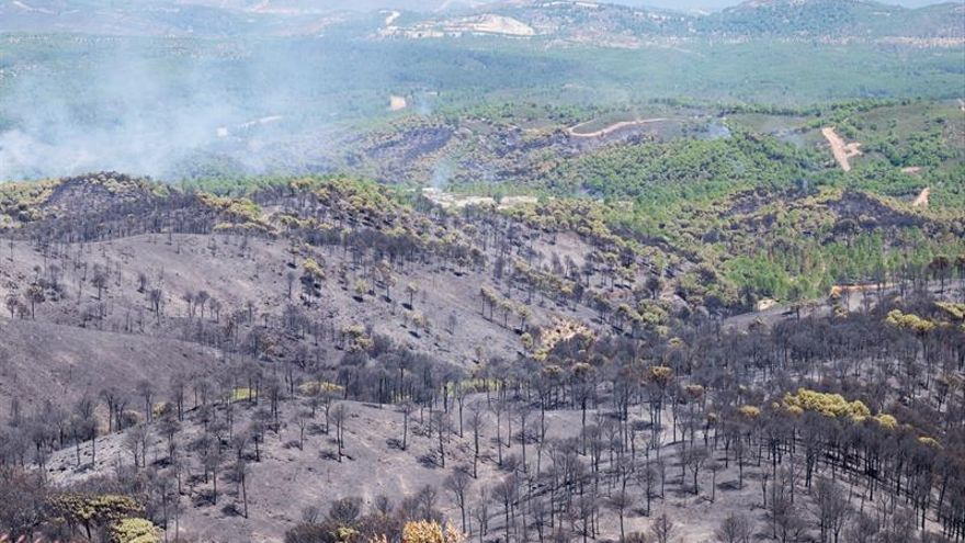 Infoca da por extinguido tras 4 días de trabajo incendio de Riotinto (Huelva)