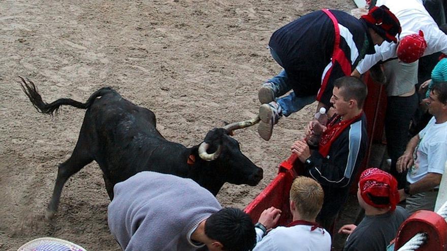 El Gobierno pretende suprimir el sacrificio obligatorio de reses tras los festejos taurinos