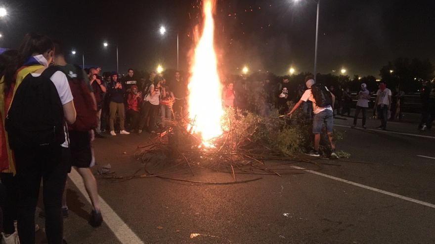 Manifestantes quemando árboles en Catalunya.