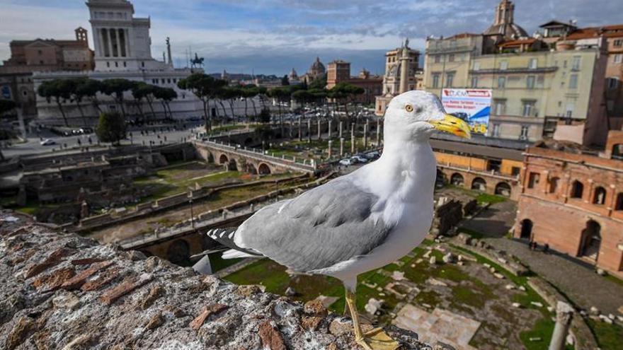 Roma recuerda a Trajano, padre de Europa, a los 1.900 años de su muerte