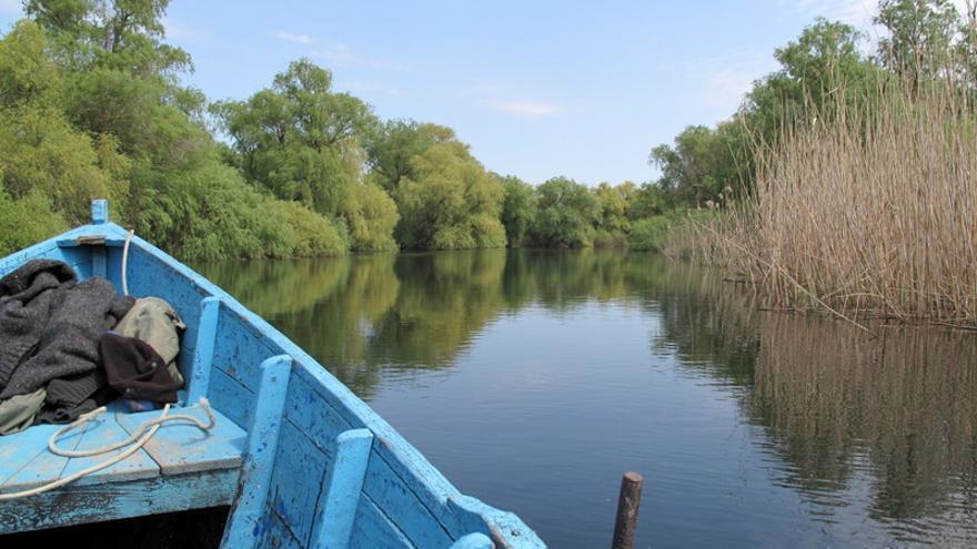 Una barca recorre uno de los múltiples canales que surcan en Delta del danubio, uno de los espacios naturales más importantes de Europa. Mihai Dragan