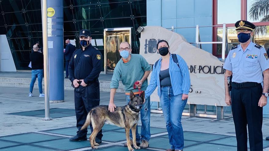 El agente canino Basco encuentra familia en Gran Canaria tras retirarse de la Policía Nacional