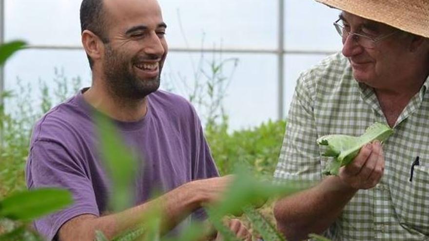 Jose Pàmies (derecha), agricultor escéptico