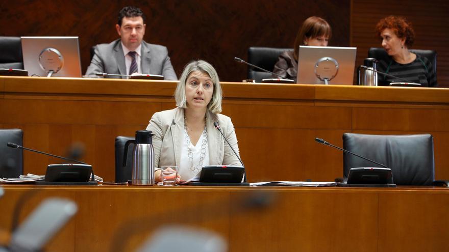 Cristina Gavín, directora gerente del IASS. Foto: Cortes de Aragón