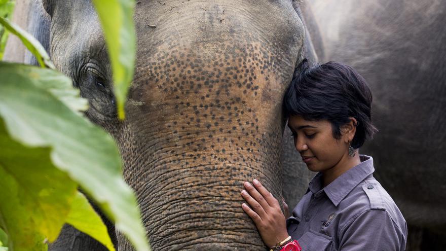 La bióloga indonesia Farwiza Farhan lucha por que el ecosistema Leuser, uno de los lugares con más biodiversidad del mundo, no muera devorado por las plantaciones de aceite de palma. / Foto cortesía de Farwiza Farhan.
