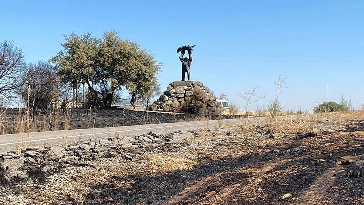 Incendio forestal en Alcaracejos