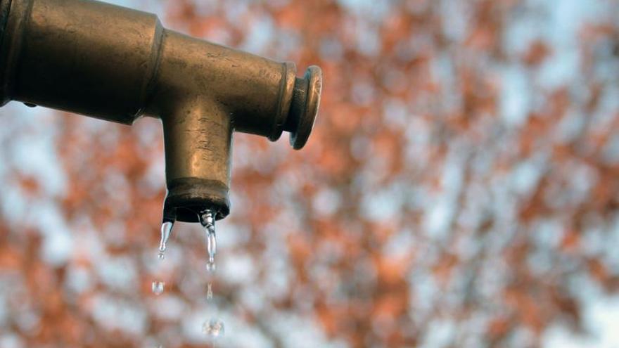 Agua. Foto por Francisca Bravo.