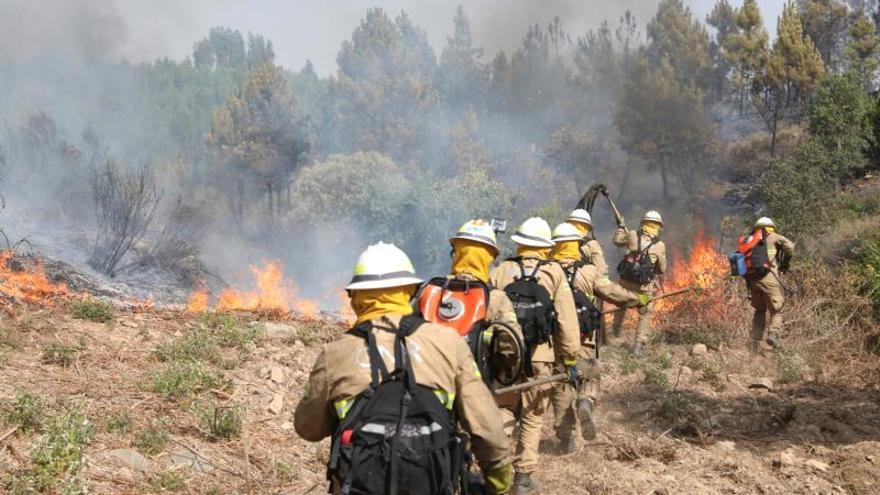 España manda a Portugal dos aviones y 4 militares de UME a combatir incendios