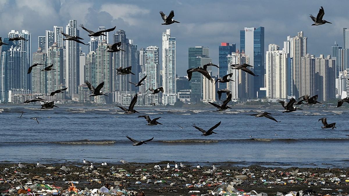 Cambio climático: alertan que las emisiones contaminantes mundiales alcanzarán un nuevo récord en 2023.