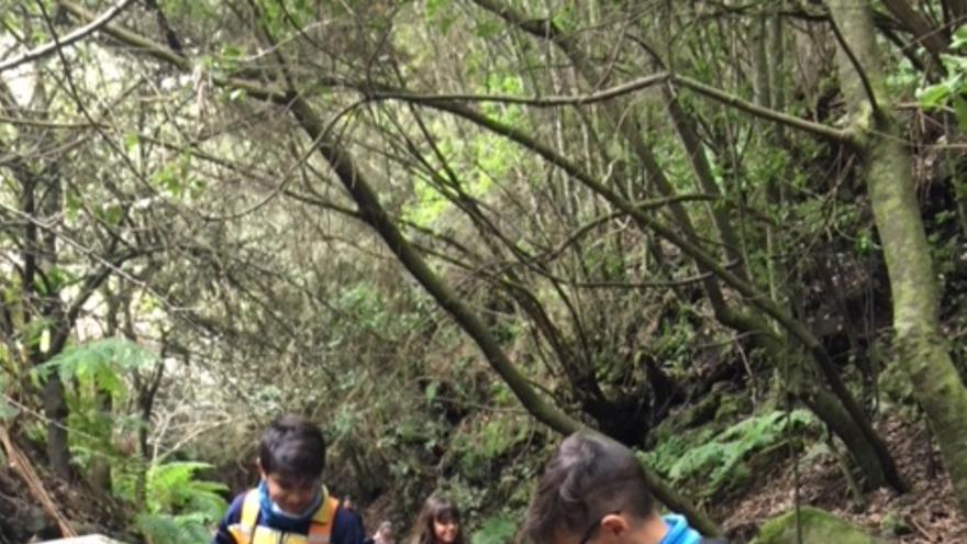 Los estudiantes aprendieron a diferenciar las categorías de Espacios Naturales Protegidos, a reconocer las funciones del Área de Medio Ambiente en conservación o uso público, valorar el peligro de las especies exóticas o a contemplar medidas de autoprotección en las viviendas frente a incendios forestales, entre otros aspectos.