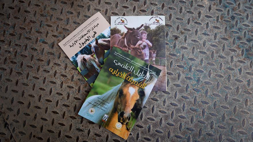 Libros sobre veterinaria en árabe