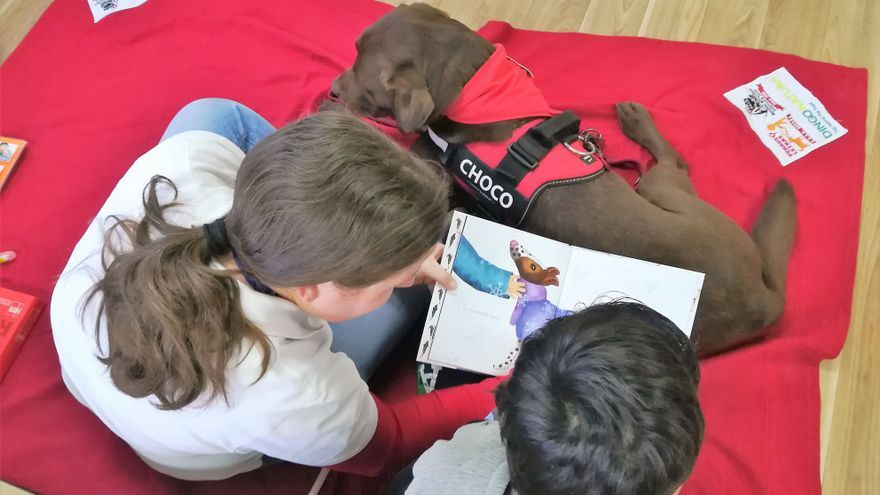 Utilización de perros para mejorar en la lectura