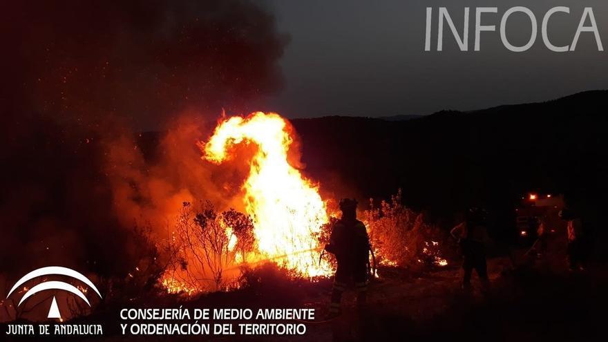 El 85% de los incendios declarados en lo que va de año en Andalucía fue causado por la acción del hombre