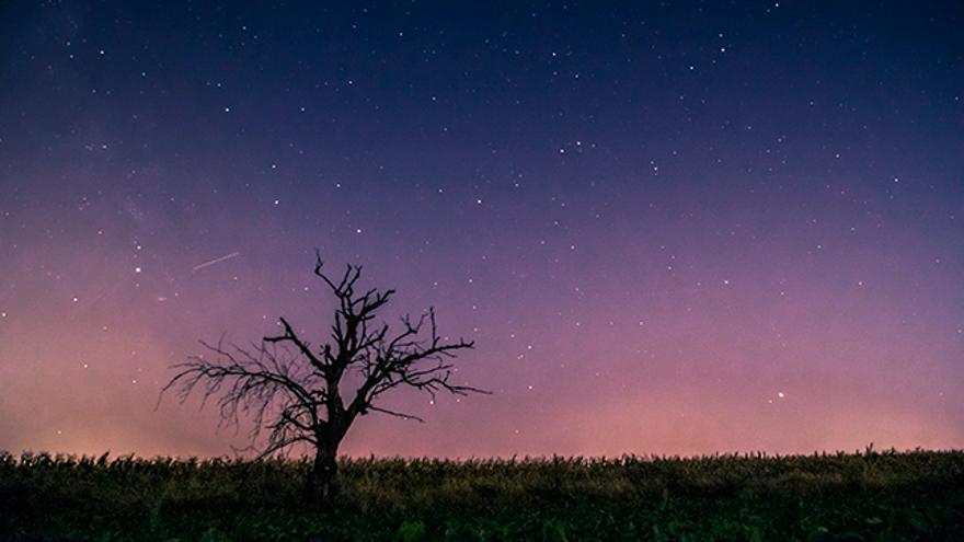 Estrellas y perseidas