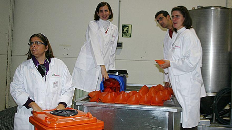 Algunos de los trabajadores de la cooperativa. / Ecoqueremos