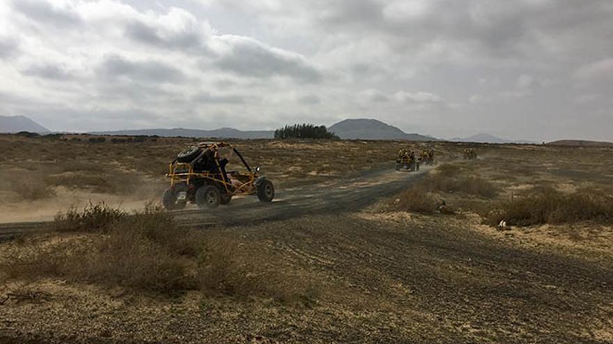 Varios buggies cruzan una zona de Lajares.