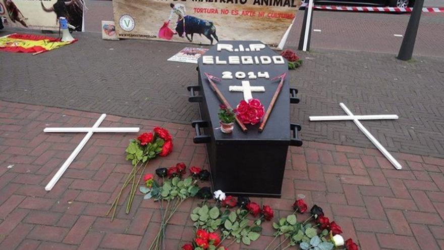 Ataúd de un toro durante la manifestación en La Haya
