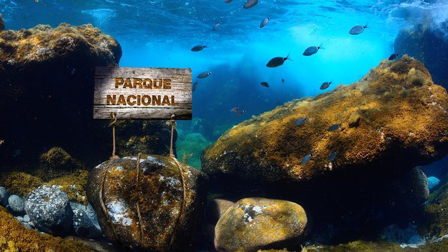 Parque Nacional Marino El Hierro