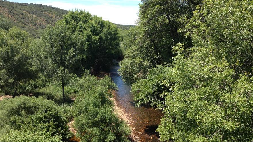 Río Estena en su tramo por Badajoz.