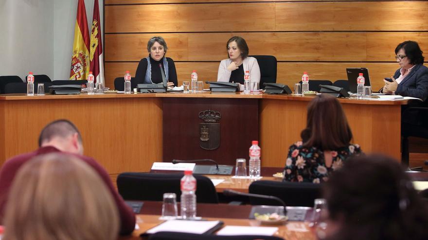 Comparecencia de la directora del Instituto de la Mujer, Araceli Martínez
