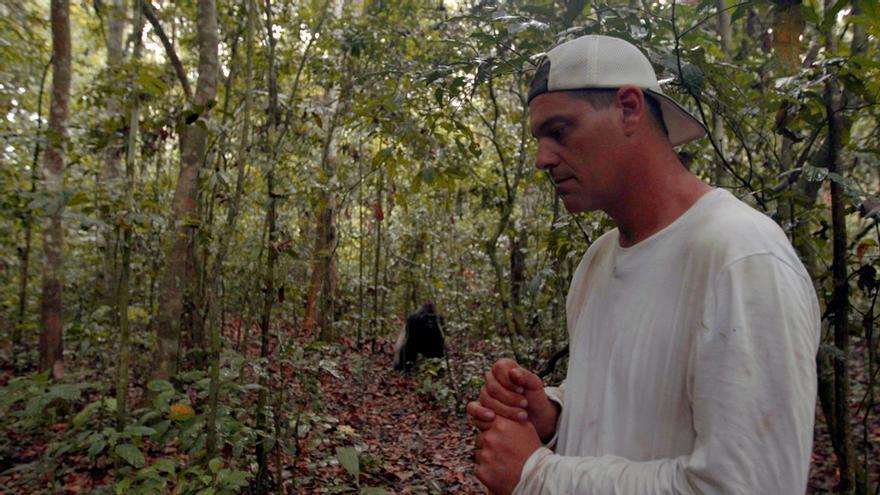 Frank Cuesta, evitando el ataque del gorila dominante