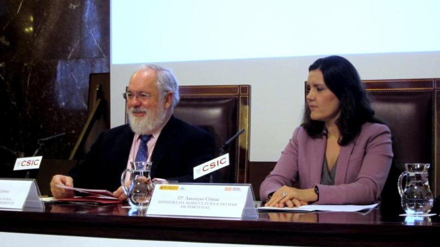 Medioambiente anuncia nuevas medidas para la protección de los alcornocales