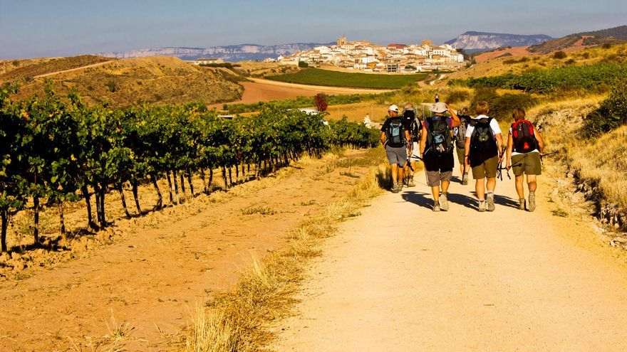 Camino de Ciraqui, en el Camino Francés a su paso por Navarra. VIAJAR AHORA
