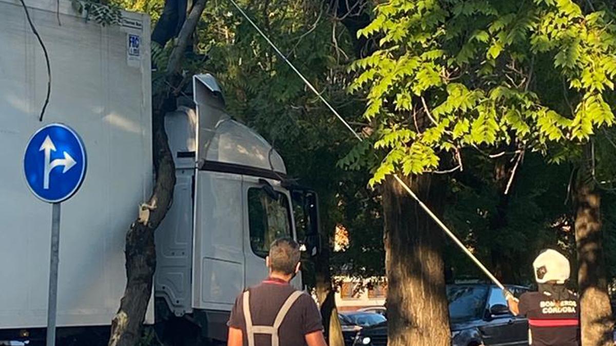 Un bombero trata de sacar la rama incrustada en la cabina del camión