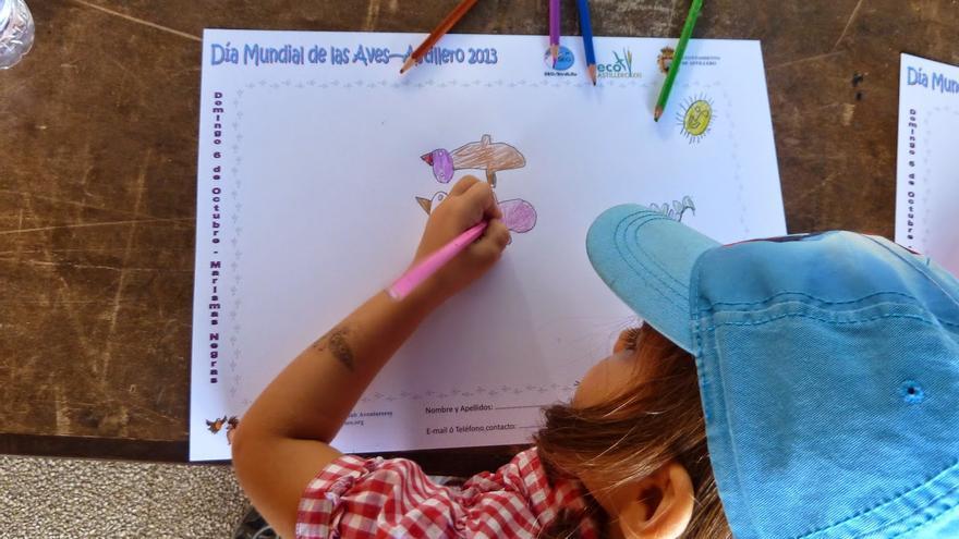 SEO/BirdLife impulsa un programa de educación ambiental para los escolares de Astillero
