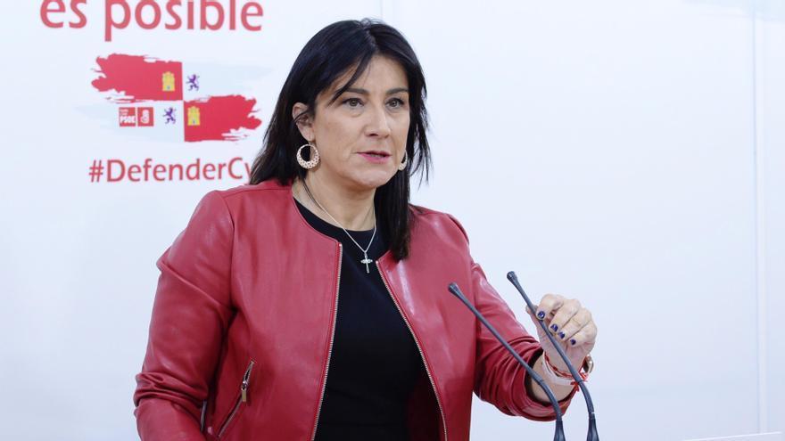 La secretaria de Organización del PSOECyL, Ana Sánchez. EFE/ Nacho Gallego/Archivo