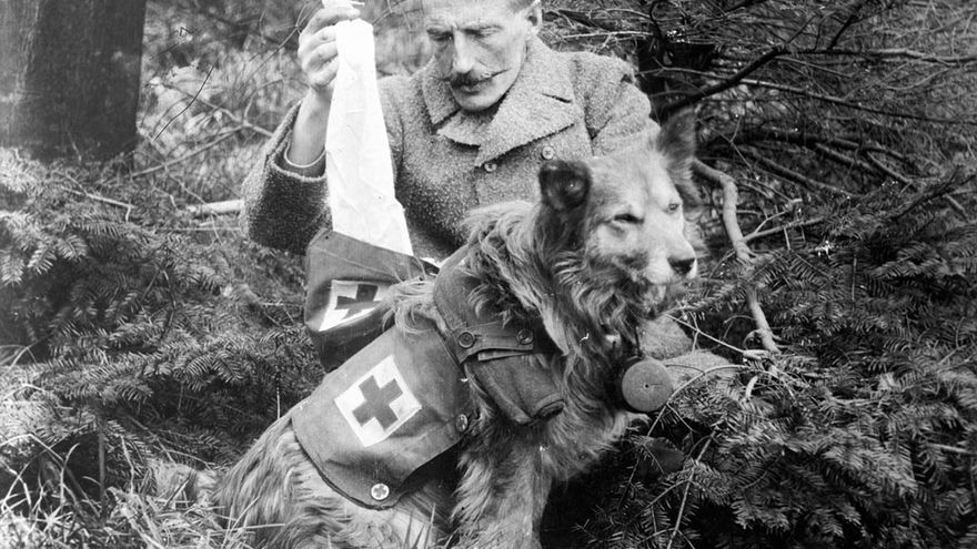 Soldado británico con su perro en el frente. Primera Guerra Mundial, 1915. Foto: Library Congress