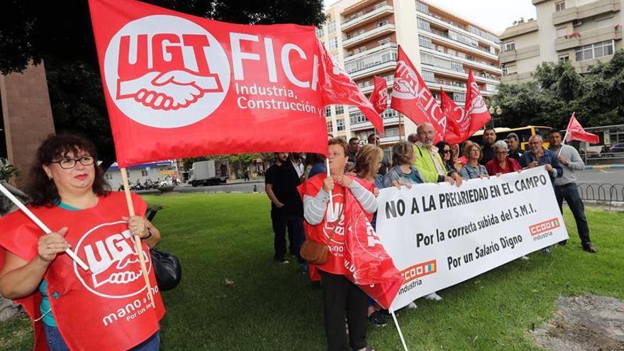 Trabajadores del campo canario, en la plaza del Obelisco de Las Palmas de Gran Canaria este martes