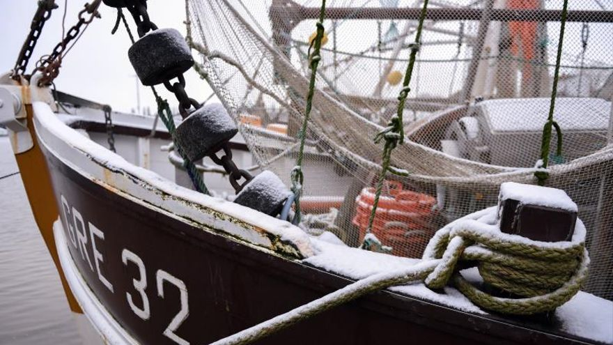 El calentamiento y una buena gestión pesquera empujan a los peces al norte