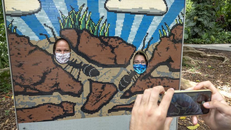Michelle McBride (i) y Cori Glick, trabajadoras del jardín botánico Flamingo, fueron registradas al posar en medio de una obra en 2D con piezas de Lego, del artista Sean Kenney, que hace parte de la exhibición 'Nature Connects: Art with LEGO Bricks' (La Naturaleza se conecta: Arte con bloques LEGO), en Davie (Florida, EE.UU.) EFE/Cristóbal Herrera