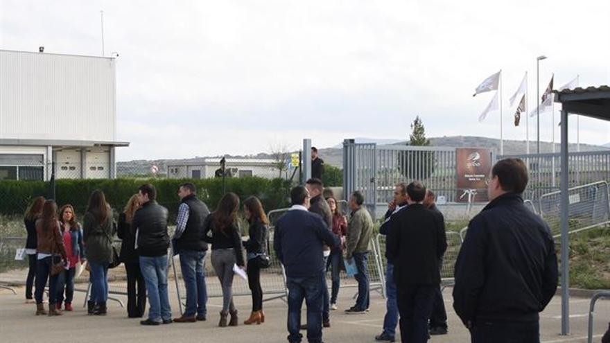Personas hacen cola para ser contratados en Gibacars, Almansa (Albacete) / Foto: Giba